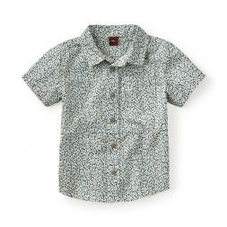 Flaminio Ponzio Shirt
