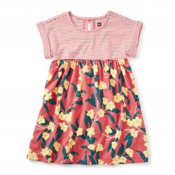 Adelaide Two-Tone Dress