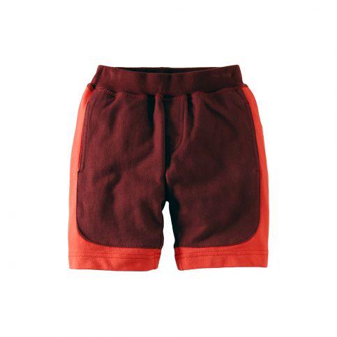 Colorblock Surf Shorts