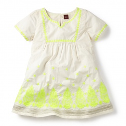 Taj Mahal Embroidered Shimmer Dress