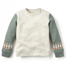 Trinidad Colorblock Sweatshirt for Boys | Tea Collection