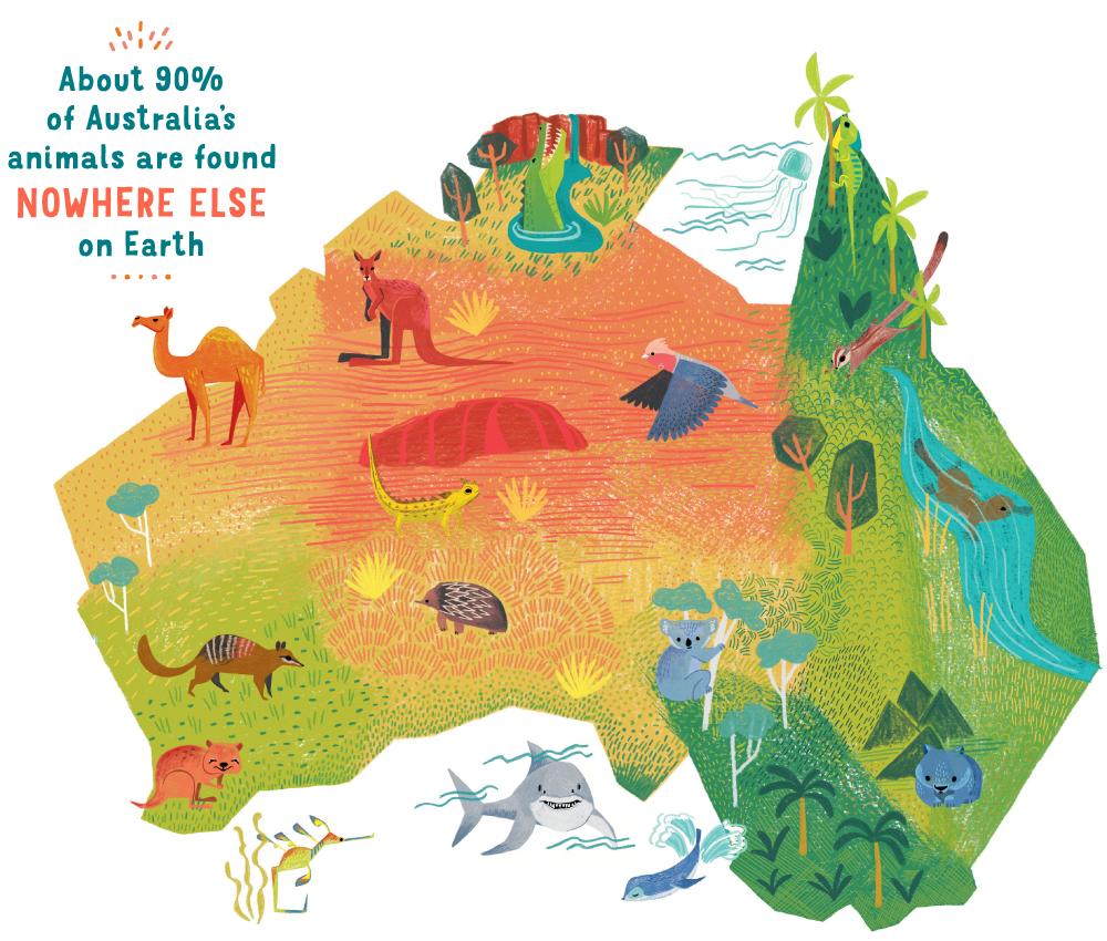 wildlife-themed map of Australia