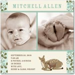 boy photo birth annoucement forest fawn