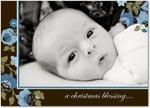 boy photo birth annoucement winter wildflowers