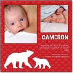boy photo birth annoucement polar silhouettes