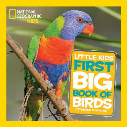 First Big Book of Birds