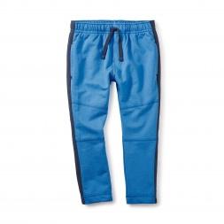 Side Stripe Sport Pants