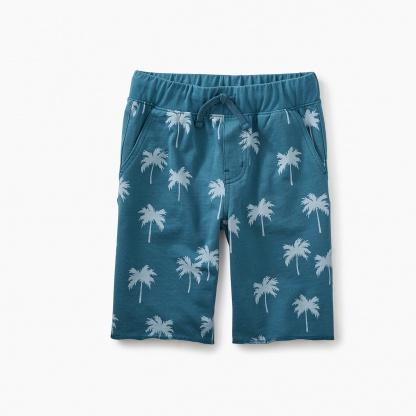 Print Cruiser Shorts