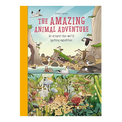 The Amazing Animal Adventure Book