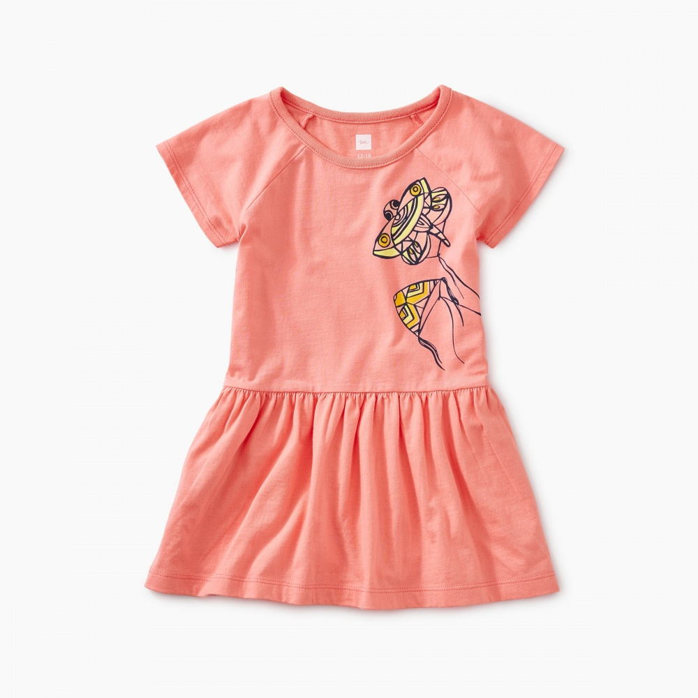 Kite Raglan Skirted Baby Dress