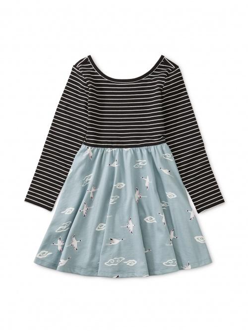 Ballet Skirted Dress