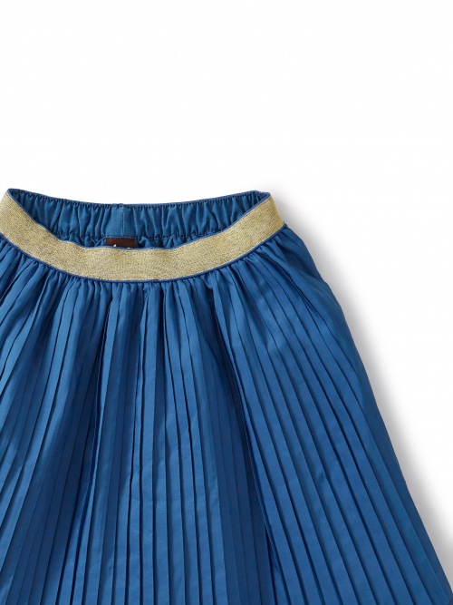 Metallic Waist Pleated Skirt