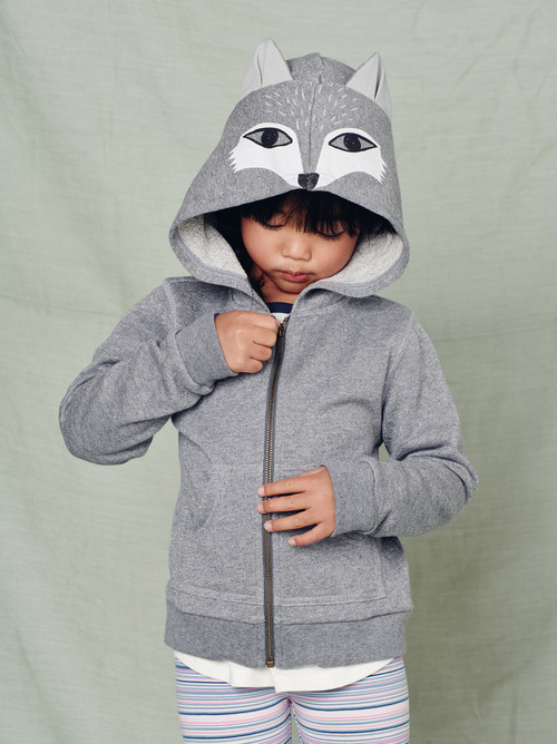 Fox Graphic Hoodie