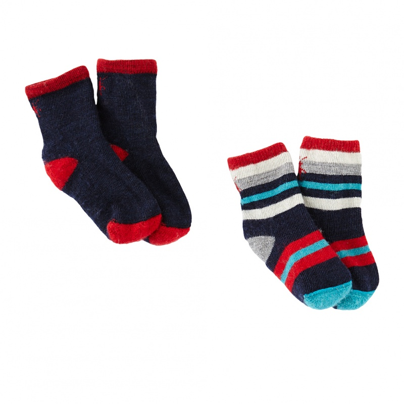 Smartwool Sock Sampler 2-Pack | Tea Collection