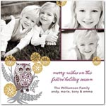 flat christmas photo cards patterned owl